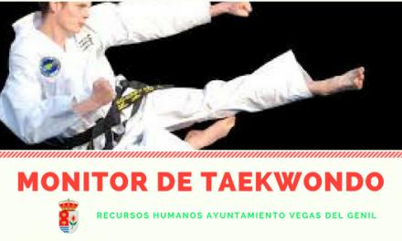Selección de un Monitor/a de Taekwondo